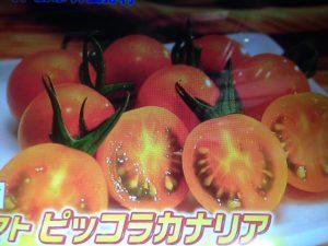 ジョブチューン トマト