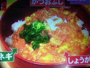 豆腐で作る熟成カレー レシピ