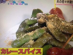 北斗晶 枝豆のガーリック焼き