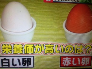 バイキング 卵 レシピ