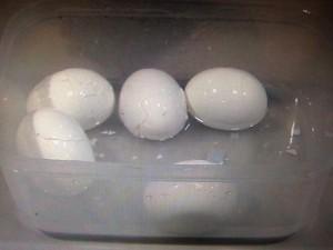 ゆで卵 むき方 タッパー