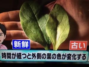 あさチャン ほうれん草 レシピ