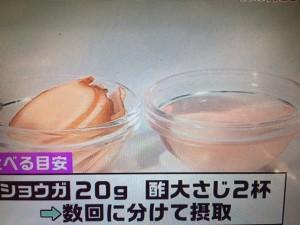 あさチャン 酢ショウガ