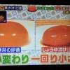 【得する人損する人】タマミちゃんの卵黄醤油漬け卵かけご飯&鯖缶カレー レシピ