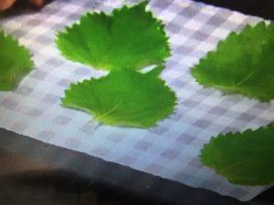 みきママレシピ 鮭のフィッシュ&チップス