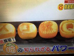 【あさイチ】柿の皮ごと&新食感スイーツレシピ、自家製干し柿の作り方