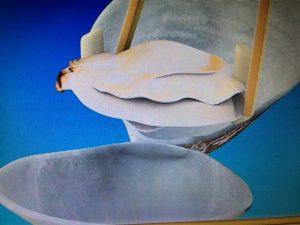 この差って何ですか?短時間でメレンゲを作るプロ技・アサリの貝柱を簡単に取る方法など
