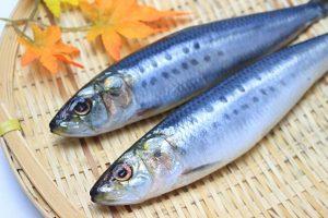 魚が生臭い原因&ヨーグルトで生臭さを消す方法