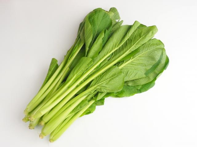 小松菜はカロテンやビタミンなどの栄養素がたっぷり!骨粗しょう症予防にも効果的
