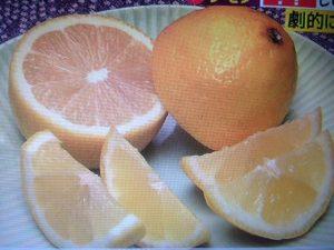 レモンを搾る前に30秒転がすと苦みがなく美味しくなる【初耳学】