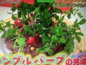 平野レミレシピ!ジャングルバーグ&パニーニ&チーズの羽つきバナナ【ウワサの食卓】