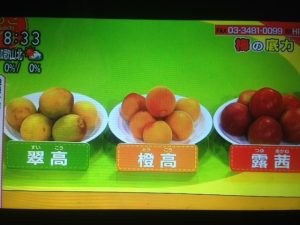 梅の底力!新品種 露茜&橙高はジュースとジャムで【あさイチ】