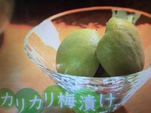 【NHKきょうの料理】カリカリ梅漬け・梅ジュース・梅じょうゆ レシピ