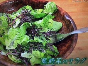 きょうの料理 葉野菜のサラダ