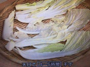 きょうの料理 干し白菜