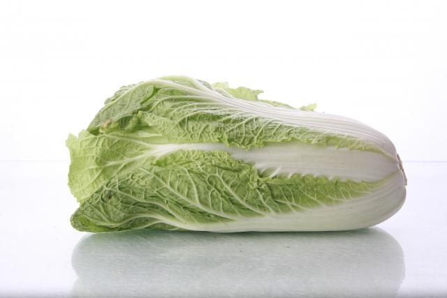 白菜 保存 常温 画像