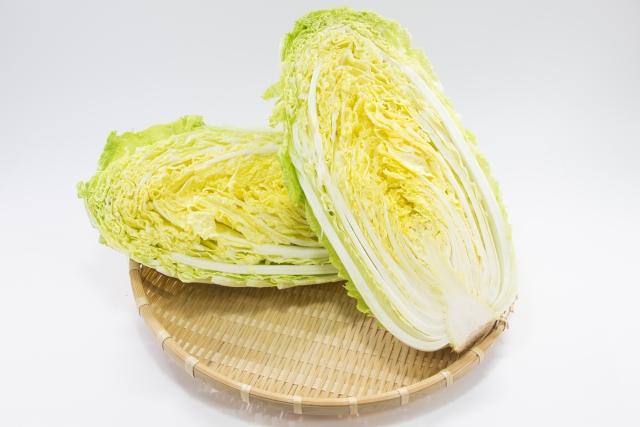 白菜 選び方 画像