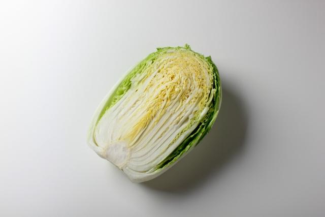 白菜 栄養価 画像