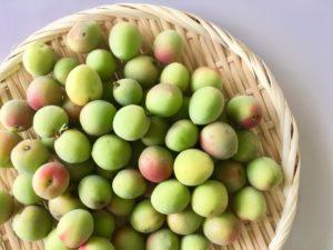健康や美肌によい梅の効果&効能とは?
