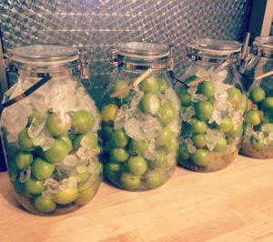 NHKきょうの料理 青梅シロップの作り方。冷凍梅&りんご酢を使用。