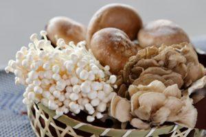 椎茸・えのきなどきのこの美味しい選び方&えのきステーキのレシピ。