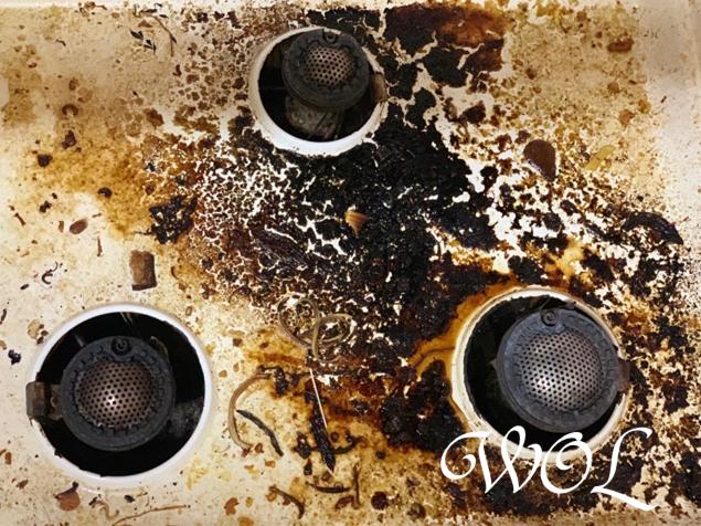 ガスコンロ 掃除 画像