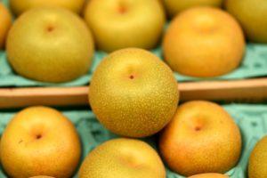 市場に出回っている梨の種類一覧。新品種「新甘泉」もご紹介。
