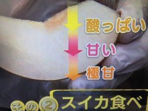 あさイチ 梨の切り方 スイカ食べ 画像