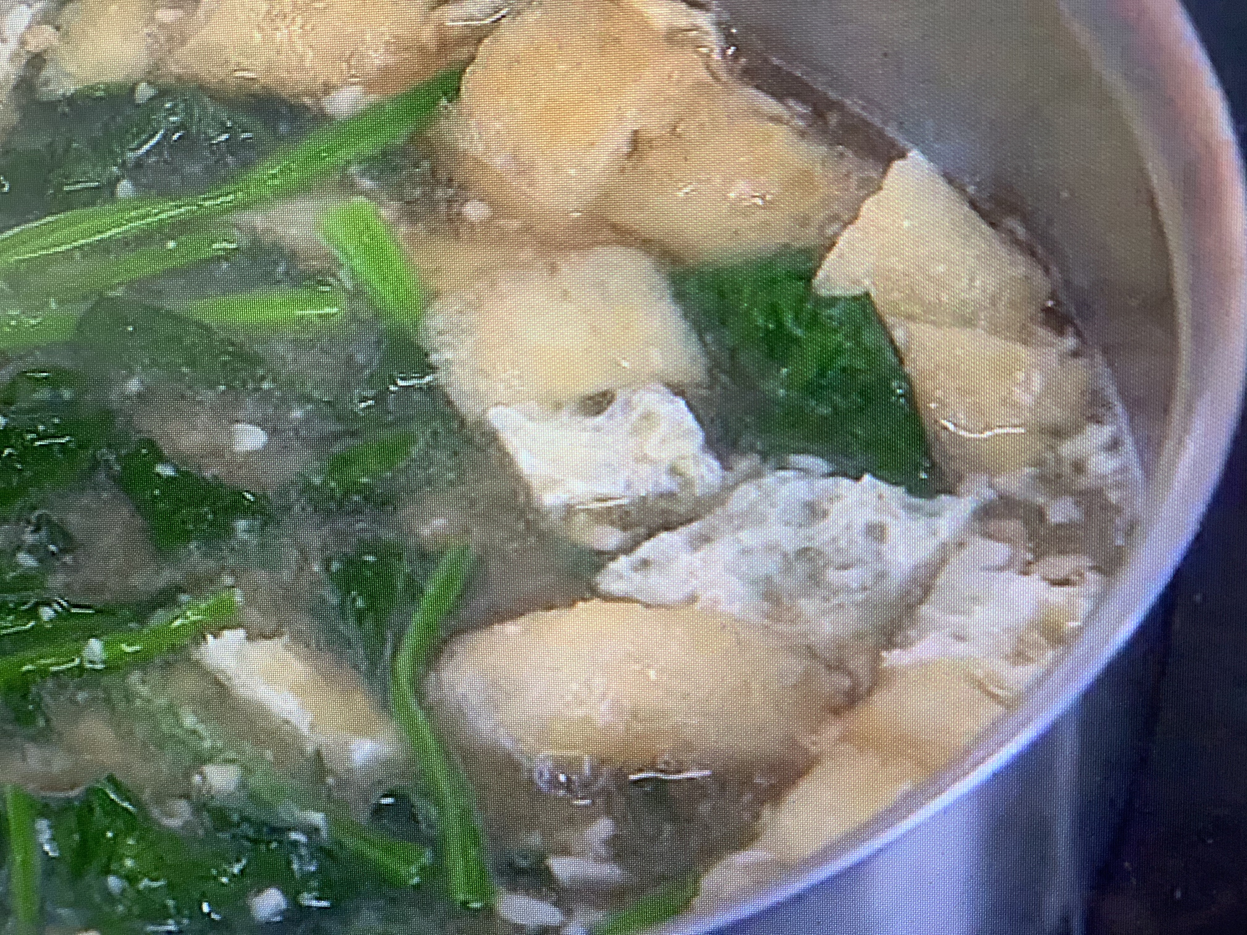 味噌汁 レシピ 画像